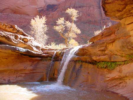 Grand Staircase Escalante Seeks Advisory Committee Nominations St