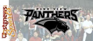 Pine-view-bg2