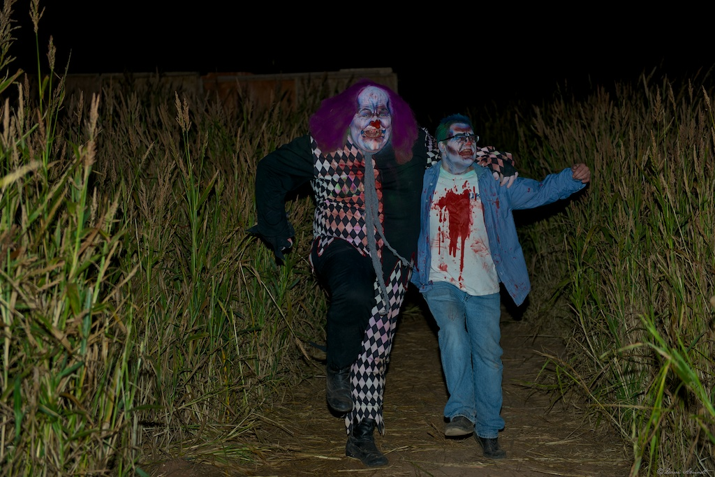 Field of Screams at Staheli Family Farm, Washington City, Utah, Oct. 20, 2012 | Photo by Dave Amodt, St. George News