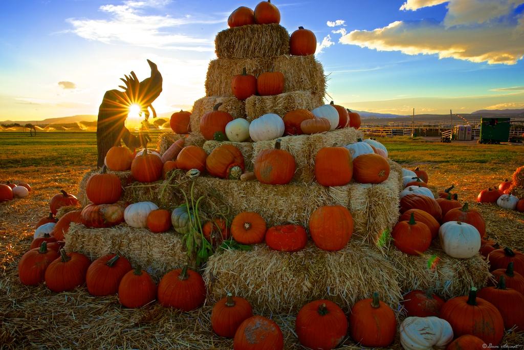 Halloween Activities Utah