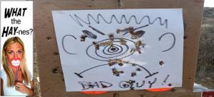 Bad guy target practice