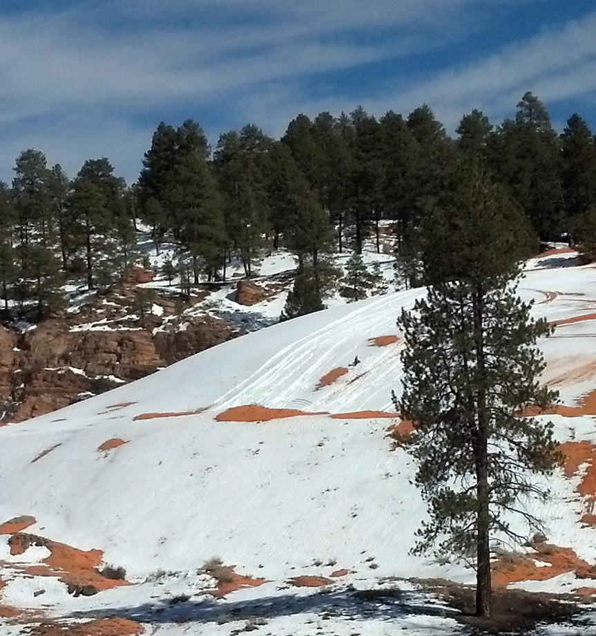 Coral Pink Sand Dunes: Snow's Melting, Activity's Warming