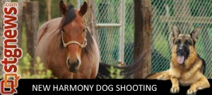 New-Harmony-Animal-Killing-1