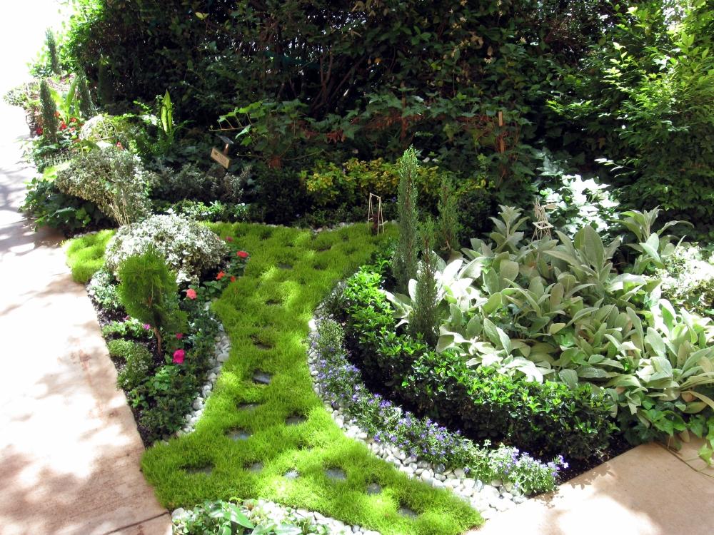 Dixie Regional Expands With Fairy Garden Neurosciences