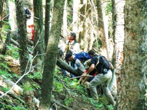 Multiple agency personnel and K-9s search for clues in the search for Dylan Redwine who went missing on Nov. 19, 2012, in La Plata County, Colo. Middle Mountain area, Colo., June 22-26, 2013 | Photo courtesy of La Plata County Sheriff's Office