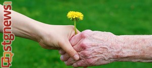 elder-abuse-prevention