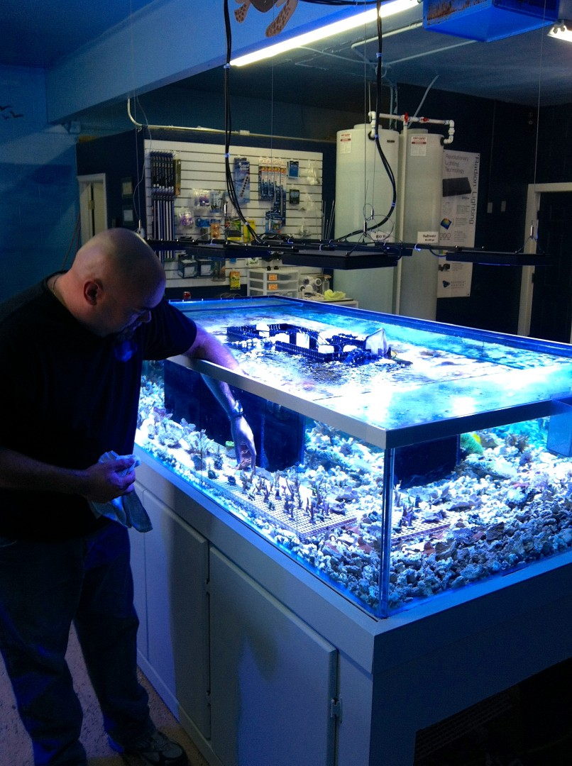 Fish aquarium utah - Fish And Frags Owner Phil Hender Inspects Locally Grown Coral Frags Fragments St