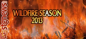wildfire-2013