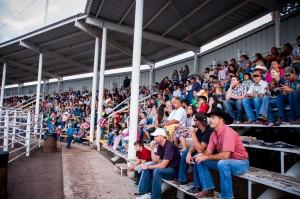 Enterprise Amateur Rodeo, Enterprise, Utah, June 27, 2013 | Photo by Rachel Guymon, St. George News
