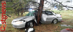 Silver Honda Accord hit standing water on I-15, hydroplaned off the highway and into a tree. Cedar City, Utah, July 27, 2013 | Photo courtesy of Utah Highway Patrol, St. George News
