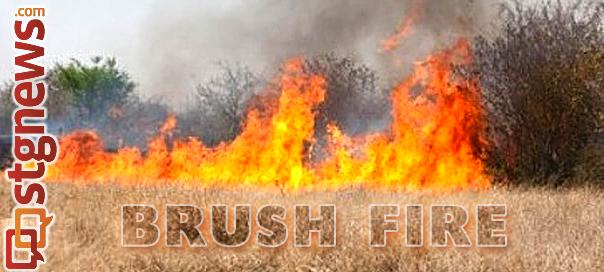 brush-fire