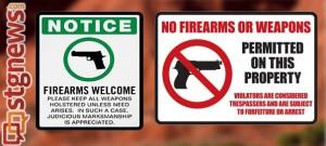 gun-conundrum