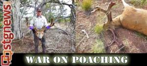 war-on-poaching