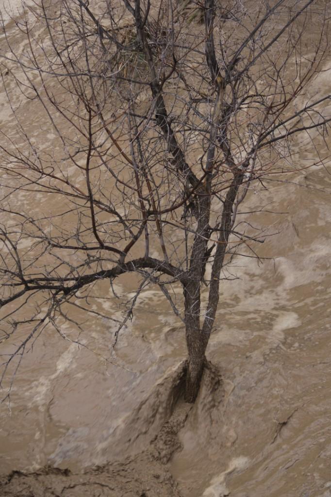 Lower Pine Creek Zion National Park flooding STGnews.com