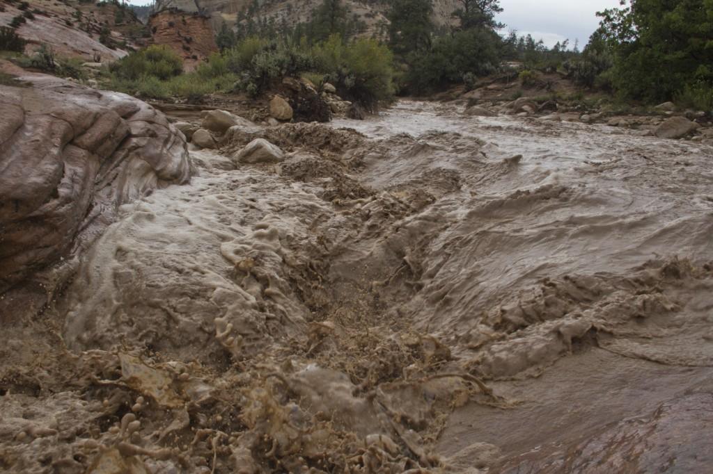 Upper Pine Creek Zion National Park flooding STGnews.com