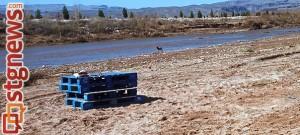 virgin-river-cleanup