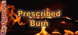 prescribed-burn