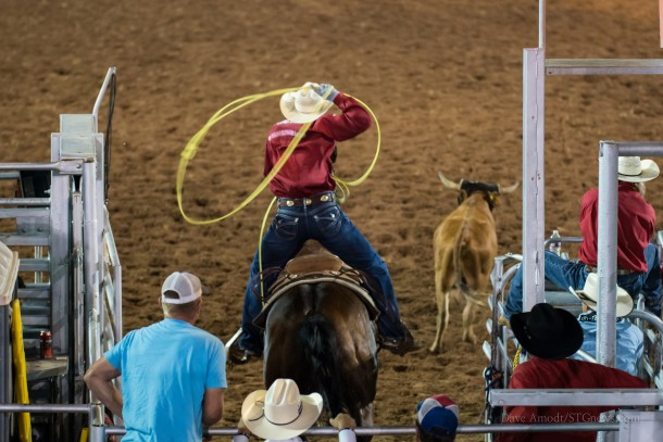 79th annual Dixie Roundup Rodeo, St. George, Utah, Sept. 12, 2013 | Photo by Dave Amodt, St. George News