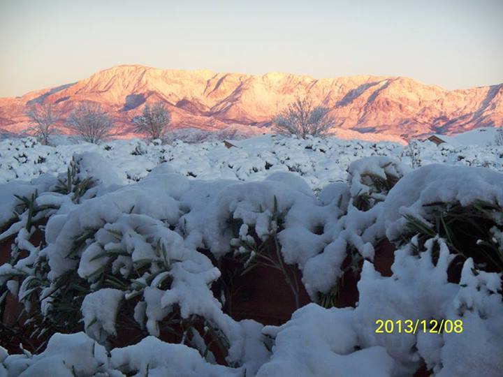 Sunny day after the snow; STGnews Photo Gallery - St ...