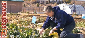 Ellen Bonadurer tends to her plot at Tonaquint Nature Center's community garden , St. George, Utah, Feb. 08, 2014 | Photo by Aspen Stoddard, St. George News