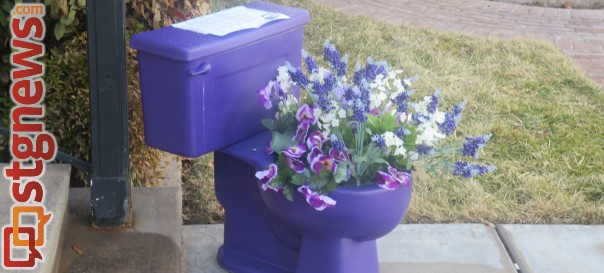The Purple Potty that will be gracing the doorsteps of area businesses as the Relay for Life draws near, St. George, Utah, Feb. 10, 2014 | Photo by Mori Kessler, St. George News