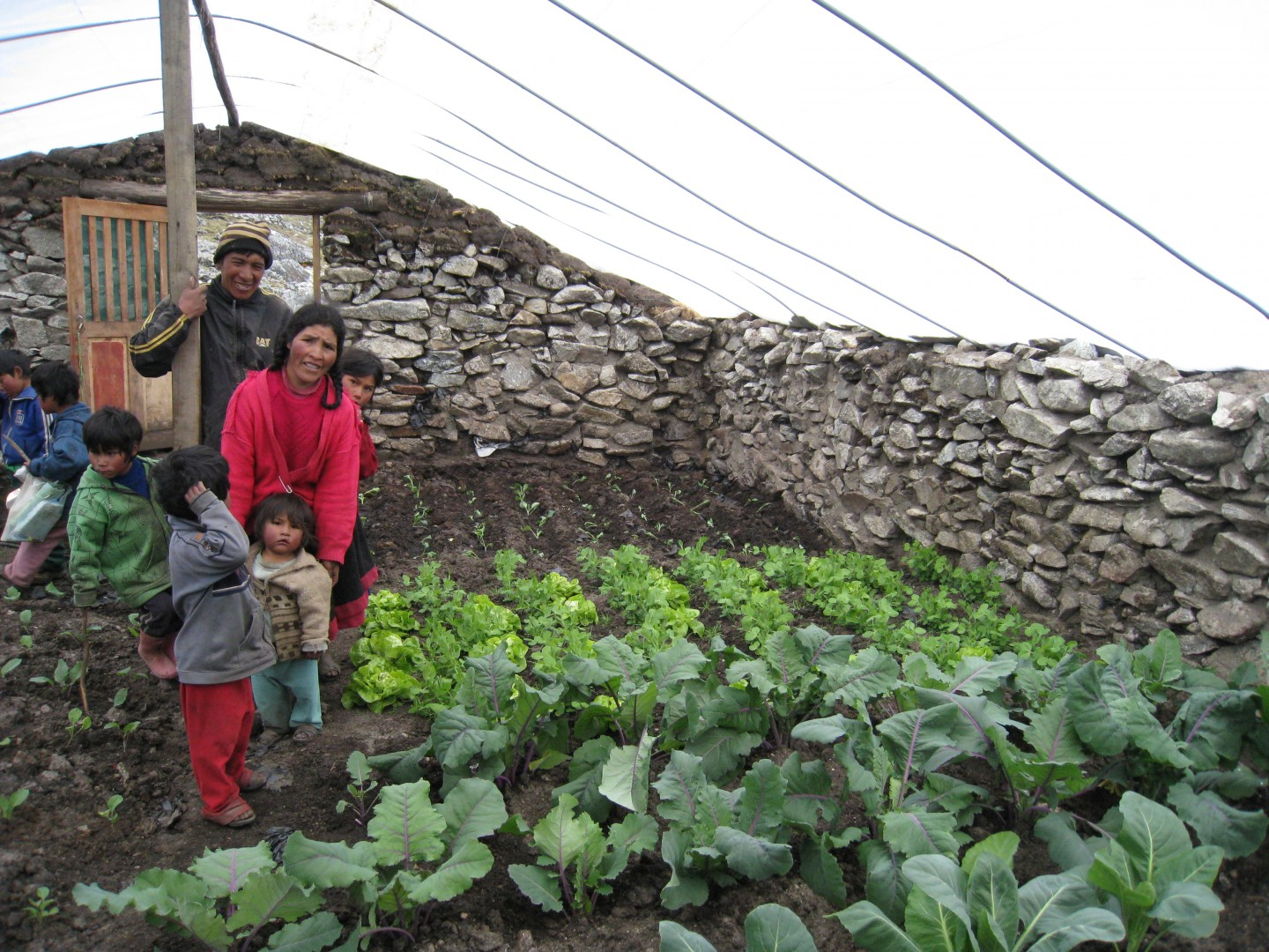 One year into Heart Walk Foundation's Grow a Mountain Garden campaign, 21 families are realizing their dreams to eat leafy green vegetables, carrots, onions, and beets. Andes Mountains, Peru, date not provided | Photo courtesy of the Heart Walk Foundation, St. George News