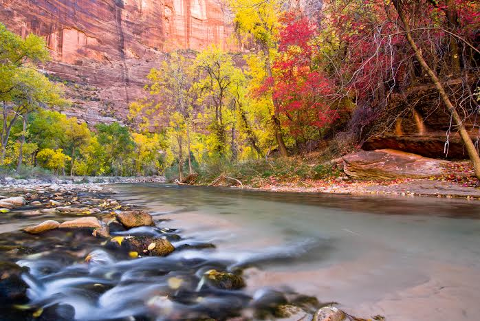 Zion Narrows, Zion National Park, Utah, Oct. 30, 2013 | Photo courtesy of Seth Hamel