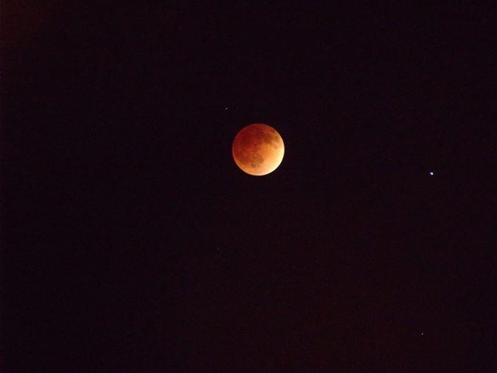 """Blood moon,"" St. George, Utah, April 15, 2014 | Photo courtesy of Tammy Teeples"