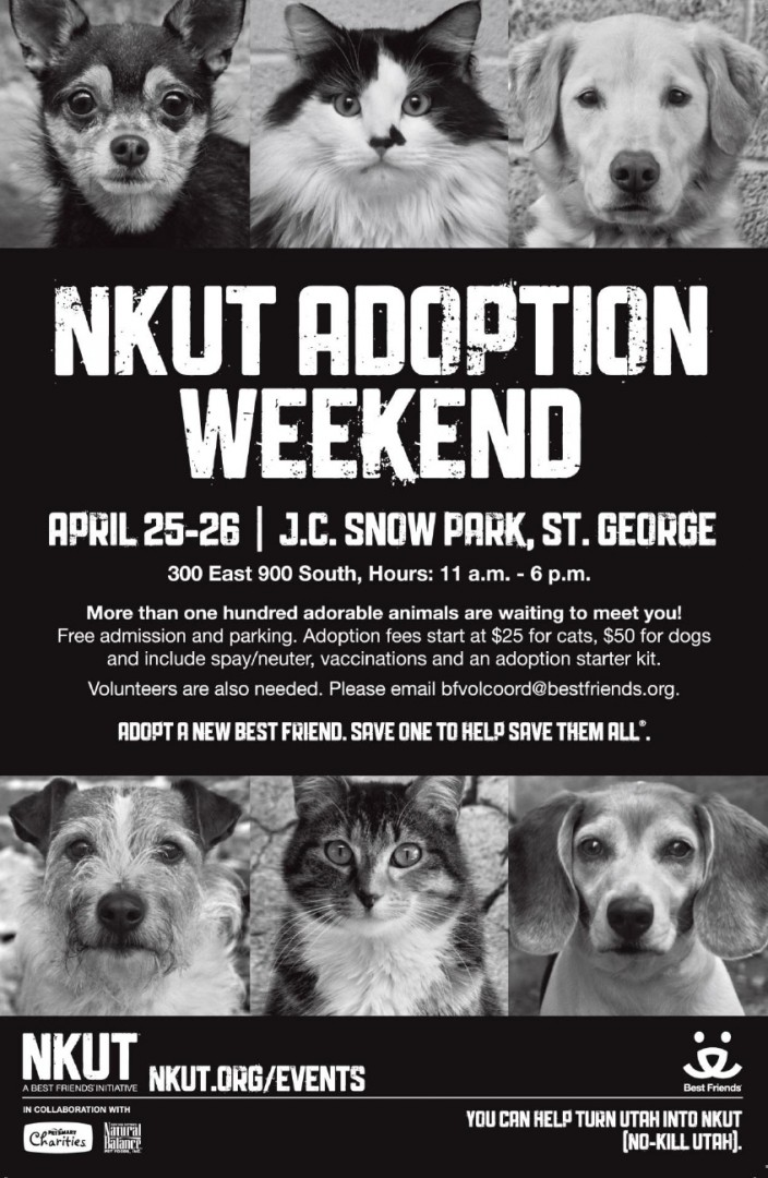 http://www.stgeorgeutah.com/wp-content/uploads/2014/04/NKUT_AdoptionWeekend_St.-George-page0002.jpg