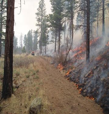 Photo courtesy of Dixie National Forest