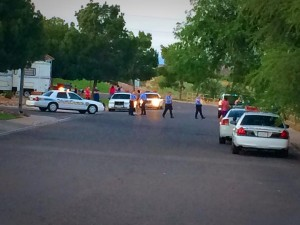 Multiple people were taken to the hospital after a large fight broke out near Waterfront Drive and 2450, St. George, Utah, June 22, 2014 | Photo by Kimberly Scott, St. George News