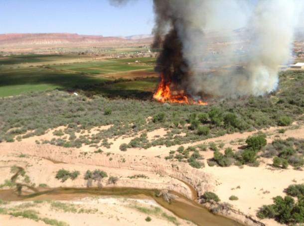 Tamarisk burning in Seegmiller Marsh near Mall Drive Bridge, St. George Utah, June, 1, 2014 | Photo by Maysen Fielding, St. George News