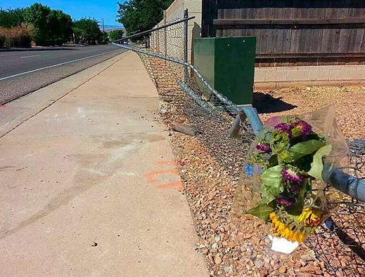 Flowers placed on a Valley View Drive fence where the rollover occurred, St. George, Utah, June 29, 2014 | Photo by Drew Allred, St. George News