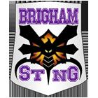 Sting_logo_large