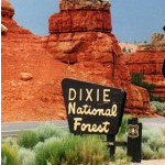 Dixie National Forest thumbnail