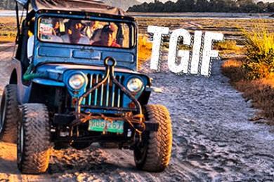 TGIF1-11-1