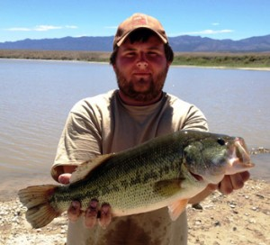 This largemouth bass is one of many that DWR biologists moved to Garrison Reservoir, Utah, 2014 | Photo by Mike Hadley, courtesy of Utah Division of Wildlife Services