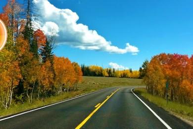 Aspen trees changing color alongside one of Utah's most scenic autumn drives, near Hancock Peak, Highway 143, Dixie National Forest, Cedar Mountain, Utah, September 20, 2014   Photo by Drew Allred, St. George News