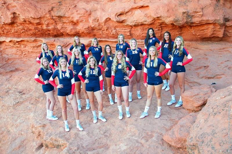 2014 DSU volleyball team