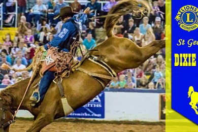 rodeo 2014