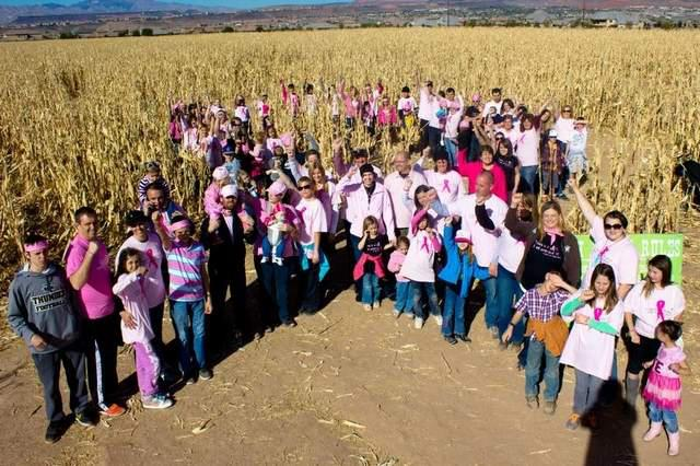 Pink ribbon formation by kids at Staheli Family Farm, Washington, Utah, circa October 2013 |Photo courtesy of Staheli Family Farm, St. George News