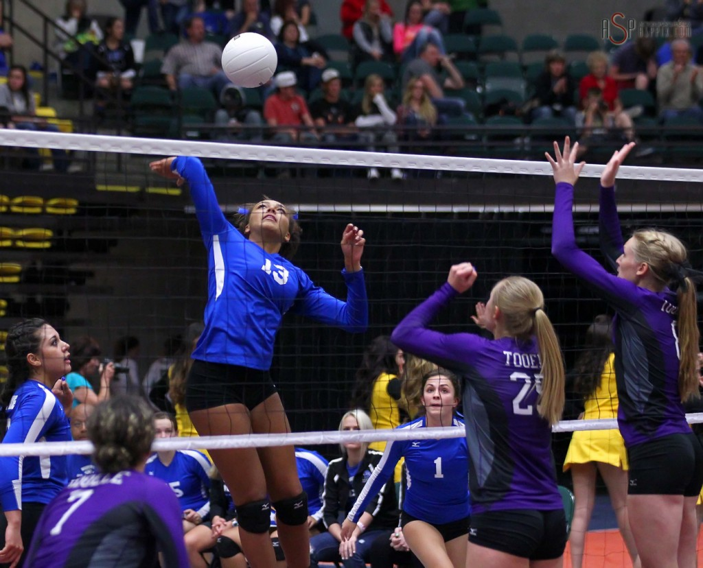 Dixie's DeAubrey Bowers spikes, 2014 3A State Volleyball Tournament, Orem, Utah, Oct. 29, 2014   Photo by Robert Hoppie, ASPpix.com, St. George News