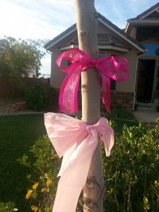 Neighbors have inserted pink light bulbs and hung pink ribbons to show support for the Petersen family, Ivins, Utah, Oct. 17, 2014 | Photo courtesy of Tonya Horlacher, St. George News