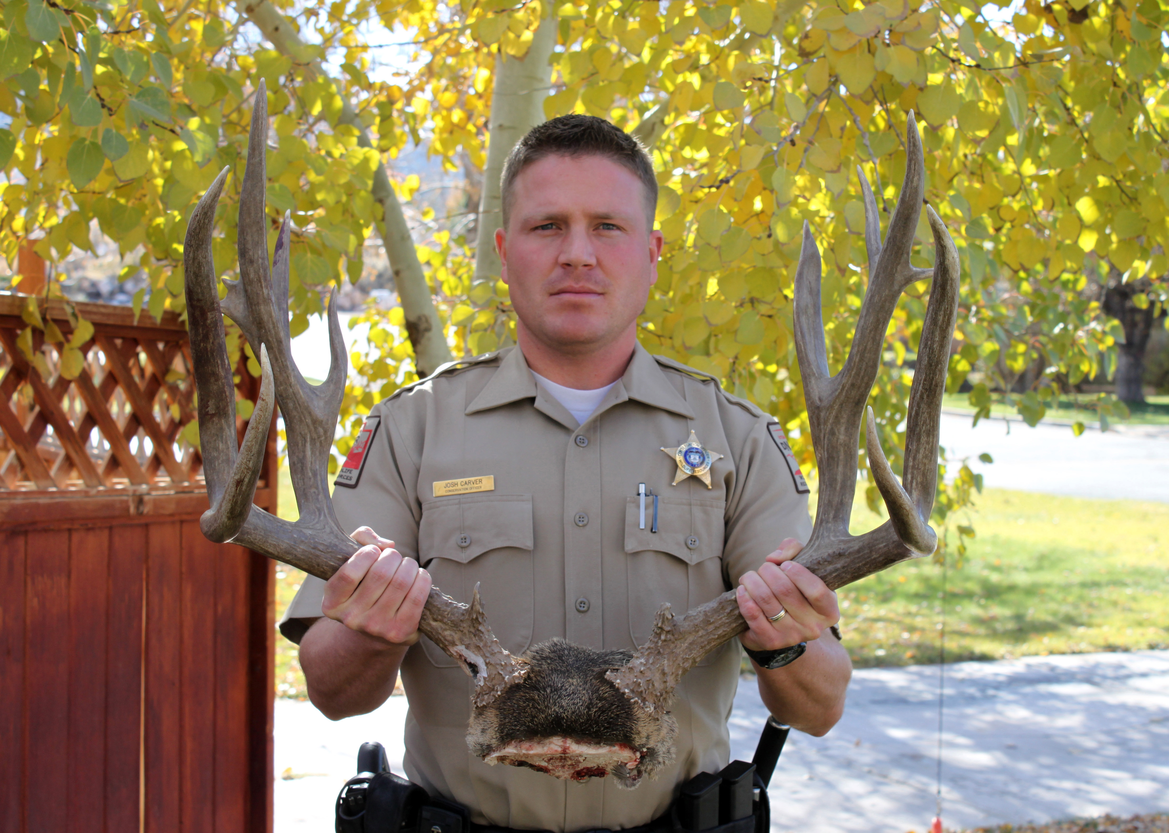 DWR officer Josh Carver shows what wildlife officers are trying to stop this winter -- the illegal killing of mule deer in Utah. Location unspecified. Circa 2014 | Photo courtesy of Utah Department of Wildlife Resources, St. George News