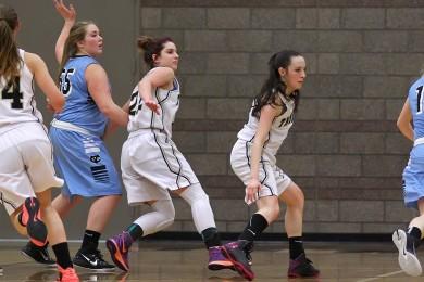 Canyon View vs. Desert Hills, Girls Basketball,  St. George, Utah, Jan. 15, 2015 | Photo by Robert Hoppie, ASPpix.com, St. George News