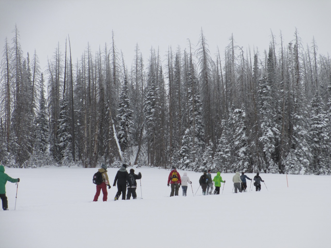 Snowshoeing, Cedar Breaks National Monument, Utah, date unspecified   Photo courtesy of Cedar Breaks National Monument, St. George News