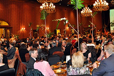 fire-and-ice-gala