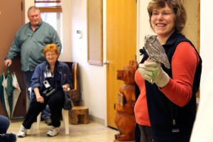 Janet Nelson with a Screech owl at the Winter Bird Festival, Jan. 30, 2015 | Photo by Leanna Bergeron