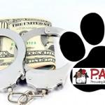 paws-arrest