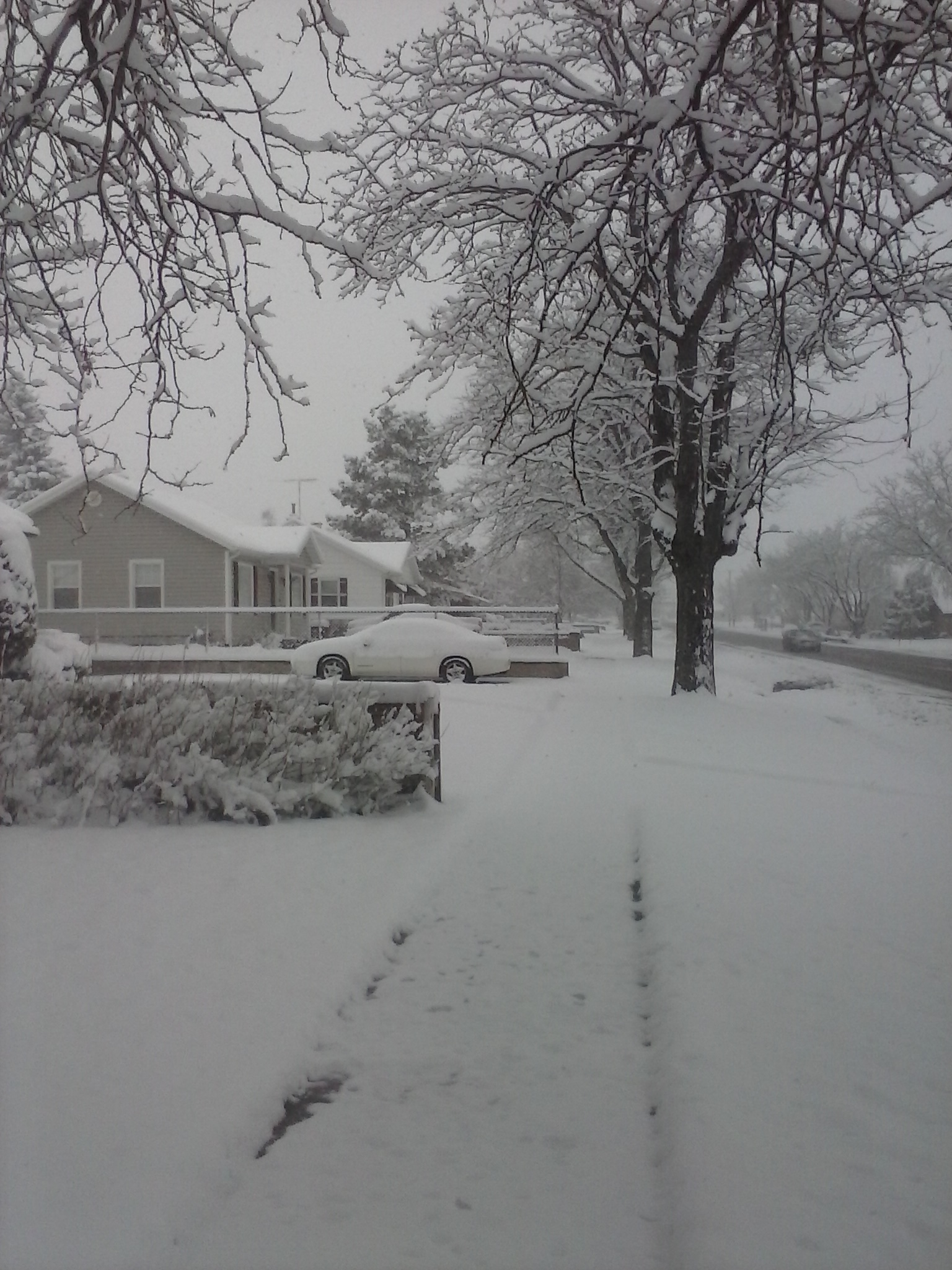 Winter snow, 300 West and 400 South, Cedar City, Utah, Feb. 22, 2015   Photo by Carin Miller, St. George News